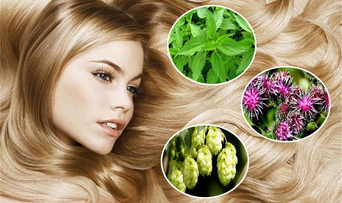 Средства для укрепления волос в домашних условиях рецепты для корней