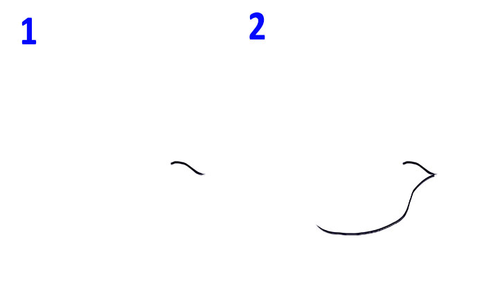 Kreslenie Vtakov Pre Deti Ako Nakreslit Vtackovu Ceruzku V Etapach